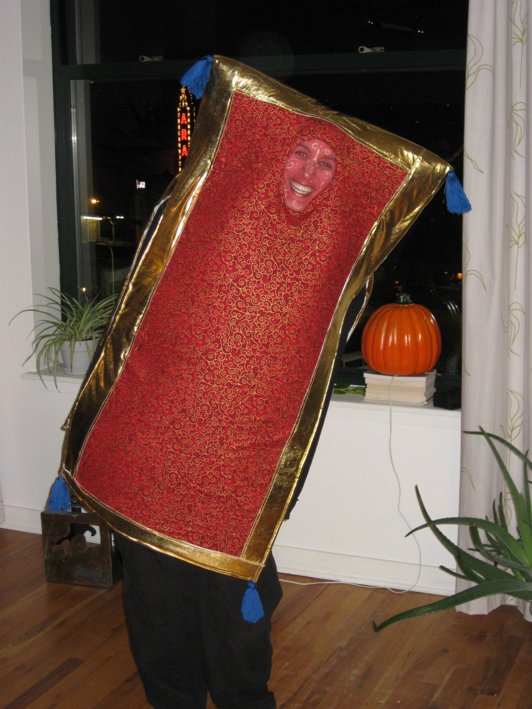 Aladdin's flying carpet handmade costume