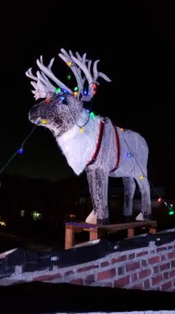 Christmas Gone Wrong Reindeer